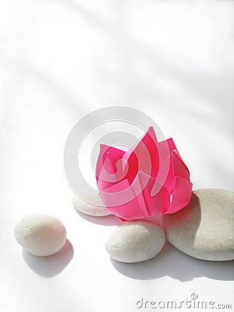 Zen Lotus origami still life