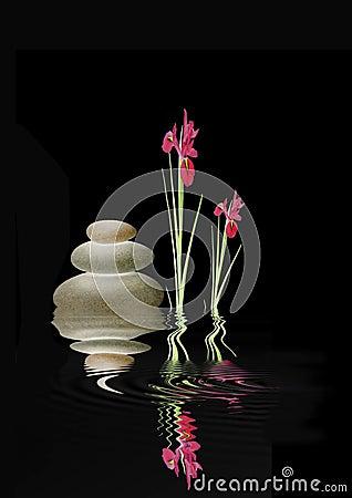 Free Zen Spa Stones And Red Iris Flowers Royalty Free Stock Photos - 6909498