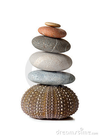 Zen-Steine und Seeigel