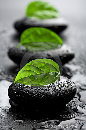Free Zen Stones And Leaves With Water Drops Royalty Free Stock Photography - 7490857