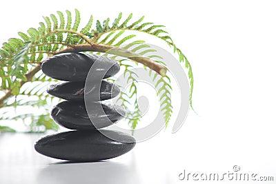 Zen stones with a fern
