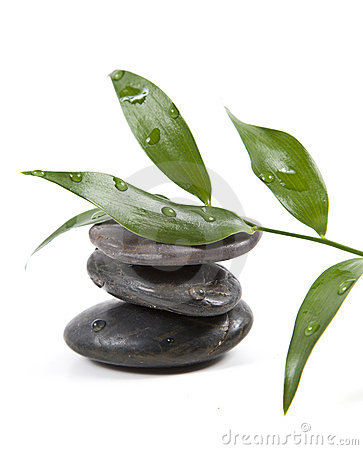 Zen stones and leaves with water