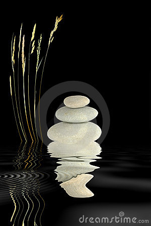 Zen Stones and Wild Grass