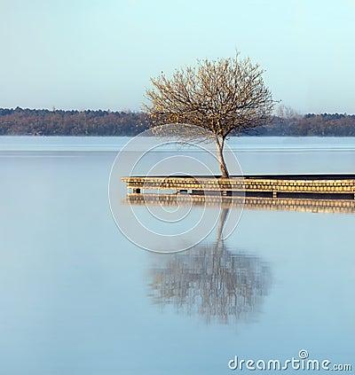 Zen waters