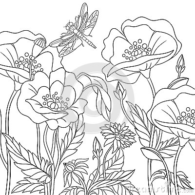 Free Zentangle Stylized Dragonfly And Poppy Flowers Stock Photography - 76462752