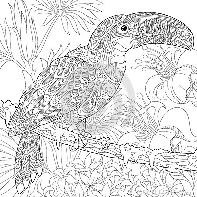 Zentangle Stylized Toucan Stock Vector Image 75008290