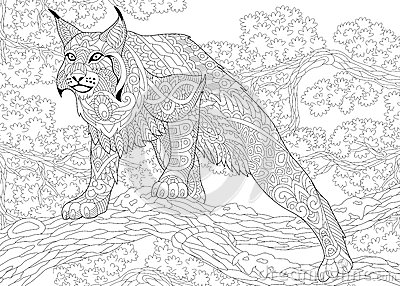 Zentangle stylized wildcat stock vector image 74060608 for Wildcat coloring pages