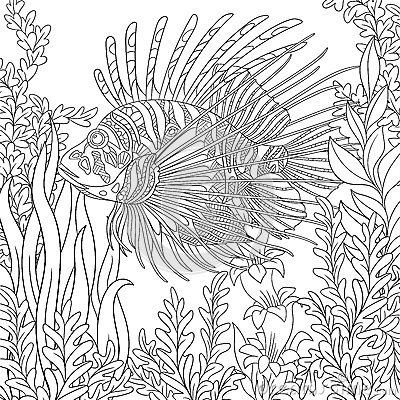 Zentangle Stylized Zebrafish Lionfish Cartoon Vector