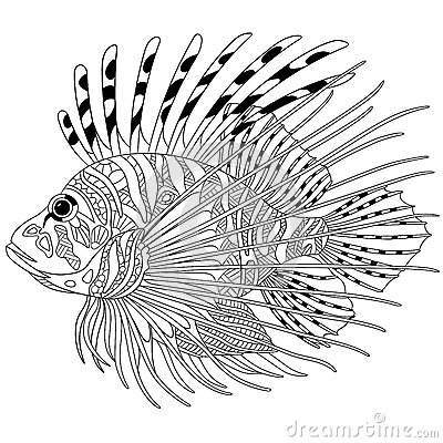 Zentangle Stylized Zebrafish lionfish Stock Vector