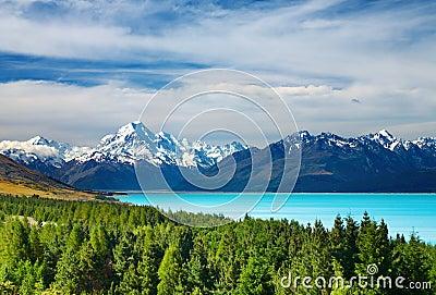Zet Cook, Nieuw Zeeland op