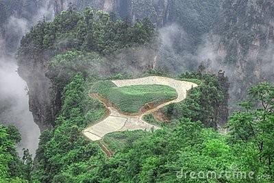 Zhangjiajie National Park, Sky Farmland