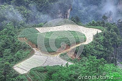 Zhangjiajie National Park, Sky Farmland