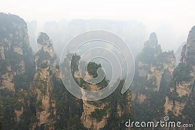 Zhangjiajie National Park ( Tian Zhi Shan ) Stock Photo ...