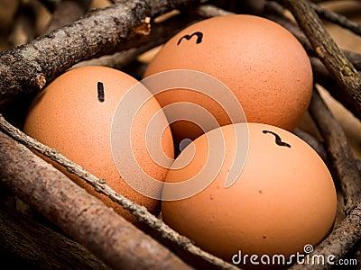 Zählen Sie Ihre Hühner