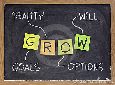 Ziele, Wirklichkeit, Optionen, werden