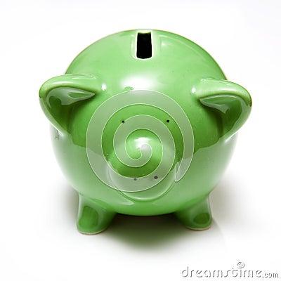 Zielony banku świnka