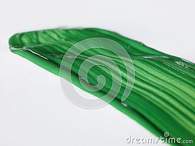 Zielony szczotkarski bang
