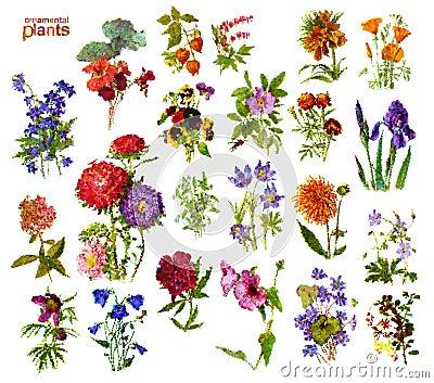 Zierpflanzen vektor abbildung bild 63152094 for Design von zierpflanzen