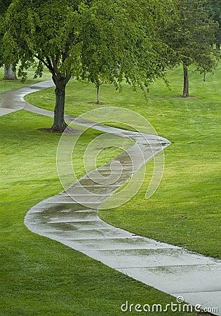Zigzag path