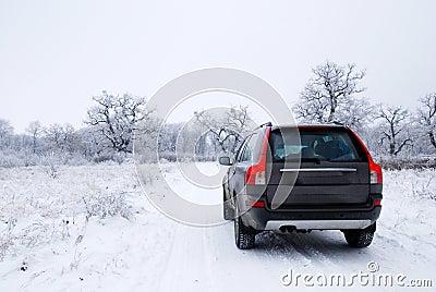 Zima samochodów