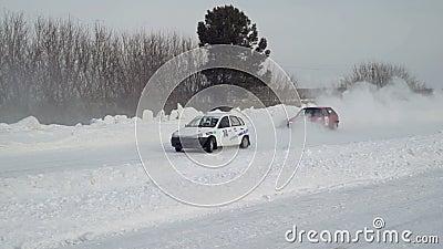 Zimy rasa na śnieżnej drodze zdjęcie wideo