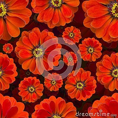 Free Zinnia Red Pattern Seamless. Beautiful Flower Background Stock Images - 98956414