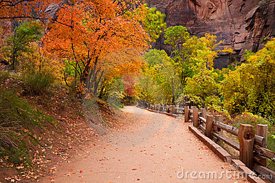 Zion Canyon Trail with Foliage Motion Blur