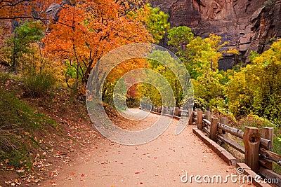 Zion Canyon Trail with Foliage Motion Blur