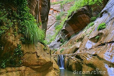 Zion Orderville Canyon
