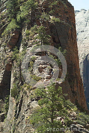 Zion Pathway to Angels Landing