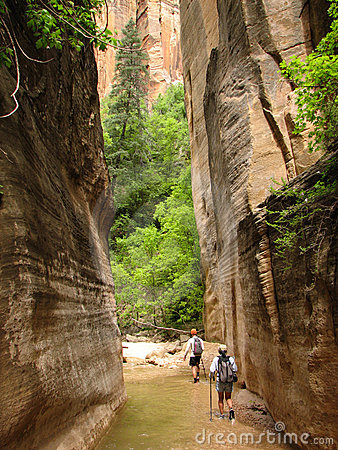 Free Zion Virgin Narrows Hikers Royalty Free Stock Images - 4109519