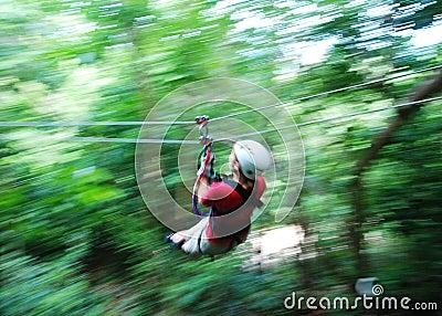 Zip Line In Jamaica