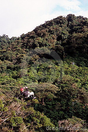Free Zip-lining Above Rainforest Stock Photos - 4194793