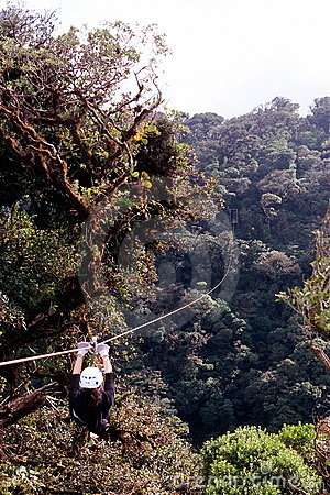 Free Ziplining In Rainforest Stock Photos - 4194853