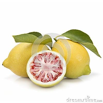Zitrone und Tomate