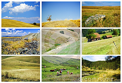 Zlatibor fields and meadows