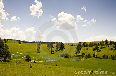Zlatibor mountain moods