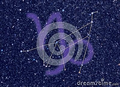 Zodiac Capricorn stars