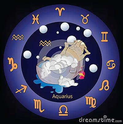 Zodiac signs. The Aquarius. Cartoon
