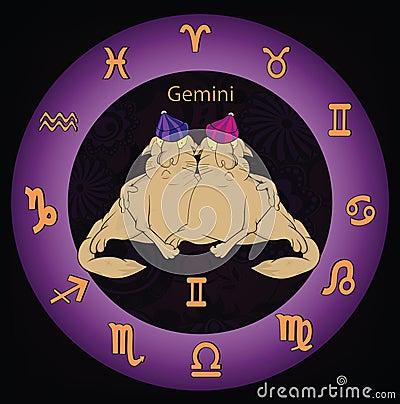 Zodiac signs twins