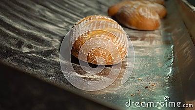 Zoet gebakken brood komt de transporteur van de oven naar de verpakking Gebleken brood in de bakkerij, net buiten stock footage