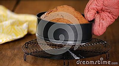 Zoete gebakken sponzaart uit oven stock video