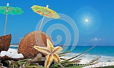 Zon en kokosnoten