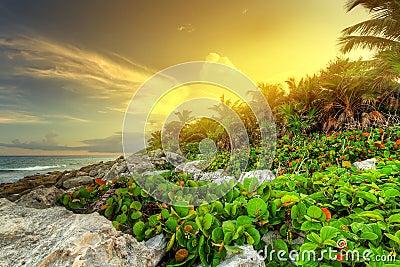 Zonsondergang op rotsachtig Caraïbisch strand