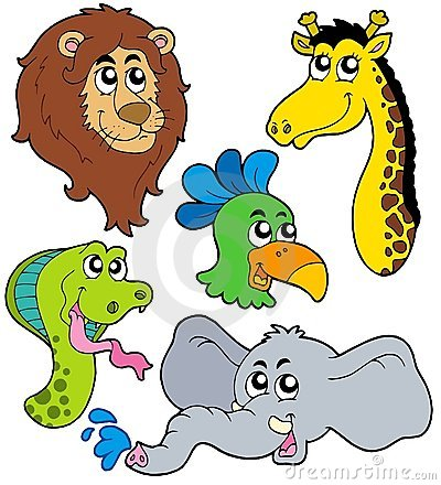 Free ZOO Animals Collection 6 Royalty Free Stock Photos - 9247058