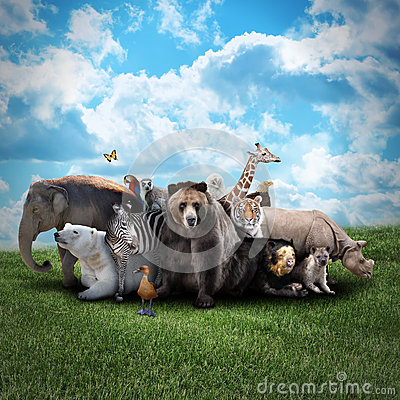 Free Zoo Animals On Nature Background Stock Photos - 31663413