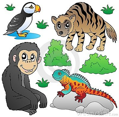 Zoo animals set 2