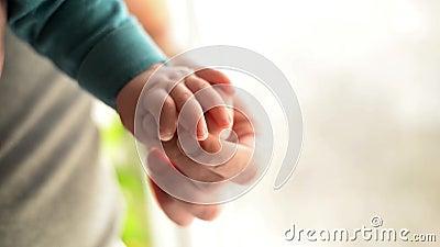 Zusters die handen houden overhandig de slaapbaby in de hand van vaderclose-up Handen die op witte achtergrond worden ge?soleerd= stock videobeelden