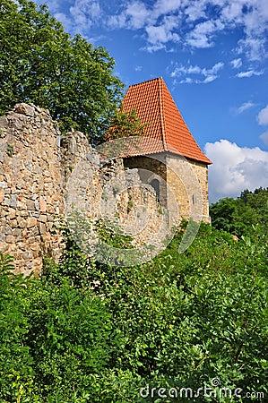 Zvikov wall