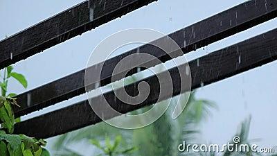 Zware regen op houten pergola stock videobeelden